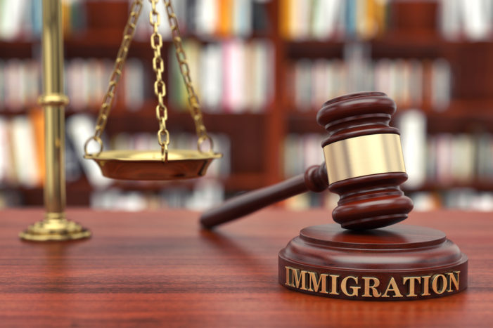 The Arleigh Louison Immigration Fraud Case