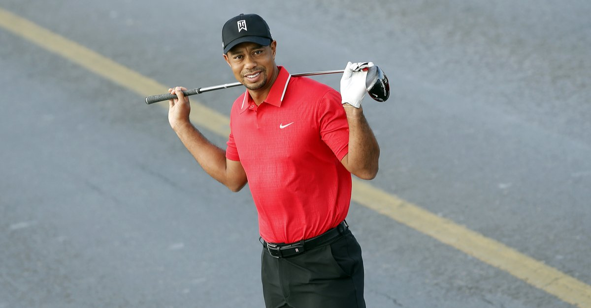 famous American golfer Tiger Woods-img (1)